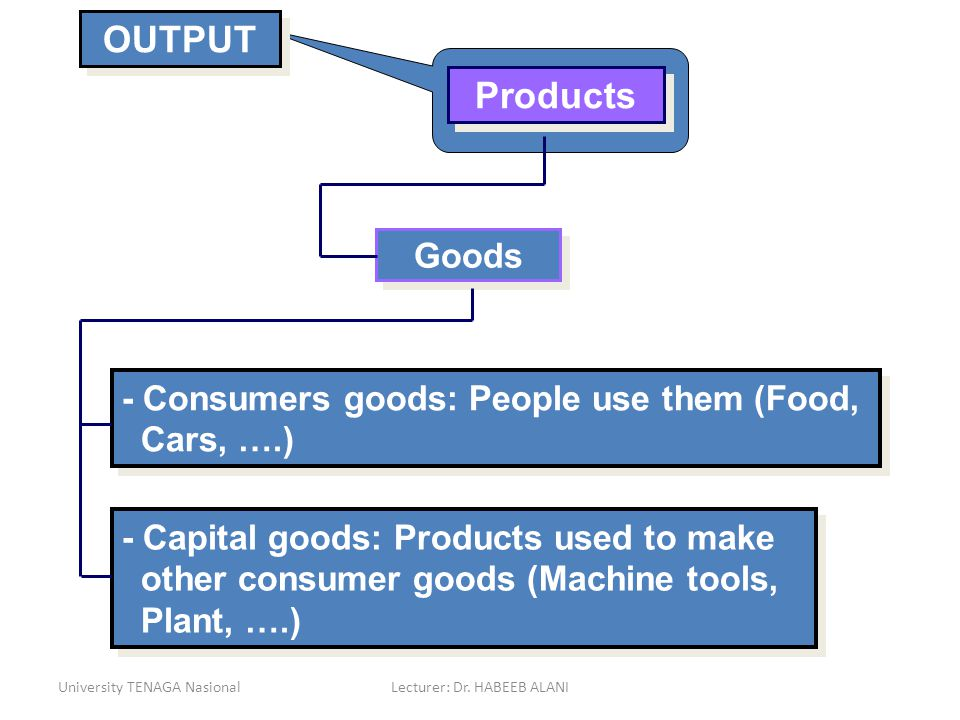 University TENAGA NasionalLecturer: Dr. HABEEB ALANI Goods - Consumers goods: People use them (Food, Cars, ….) OUTPUT Products - Capital goods: Produc