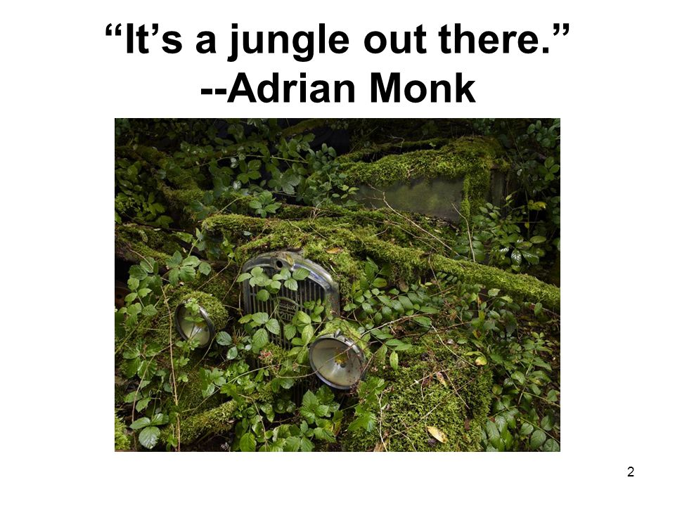 Its a jungle out there. --Adrian Monk 2