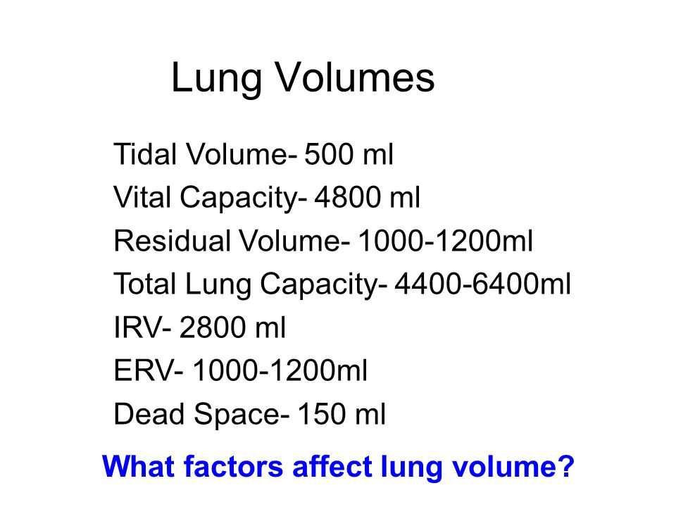 Lung Volumes Tidal Volume- 500 ml Vital Capacity- 4800 ml Residual Volume- 1000-1200ml Total Lung Capacity- 4400-6400ml IRV- 2800 ml ERV- 1000-1200ml Dead Space- 150 ml What factors affect lung volume?
