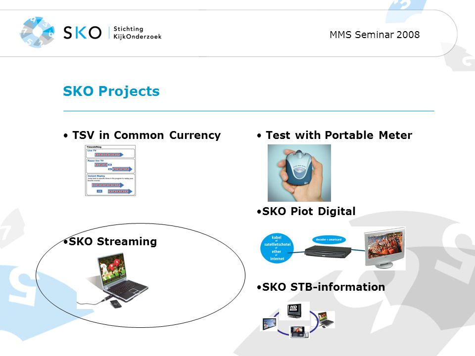 MMS Seminar 2008 SKO Projects TSV in Common Currency SKO Streaming Test with Portable Meter SKO Piot Digital SKO STB-information