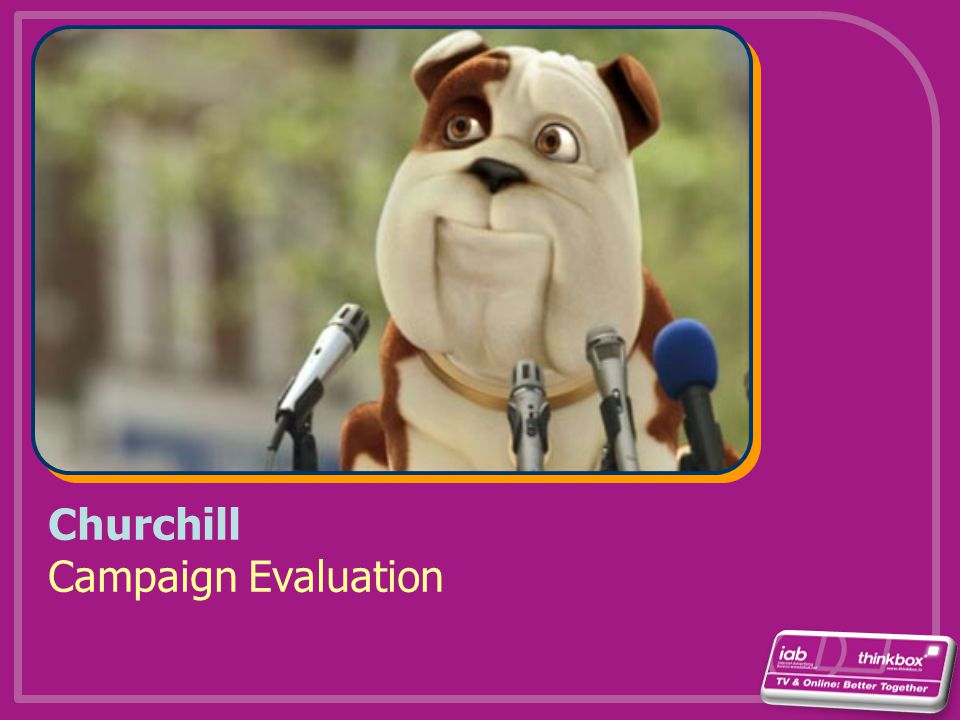 Churchill Campaign Evaluation