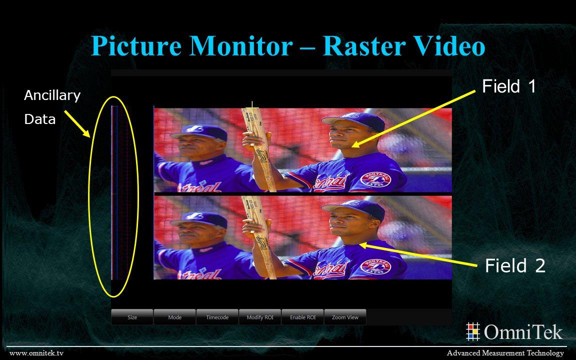 OmniTek Advanced Measurement Technologywww.omnitek.tv Picture Monitor – Raster Video Field 1 Field 2 Ancillary Data
