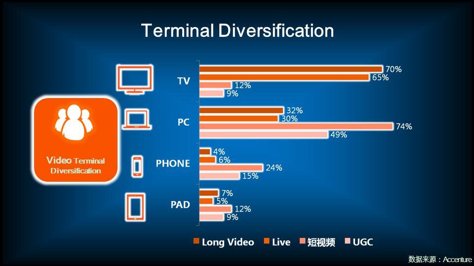 Terminal Diversification Accenture