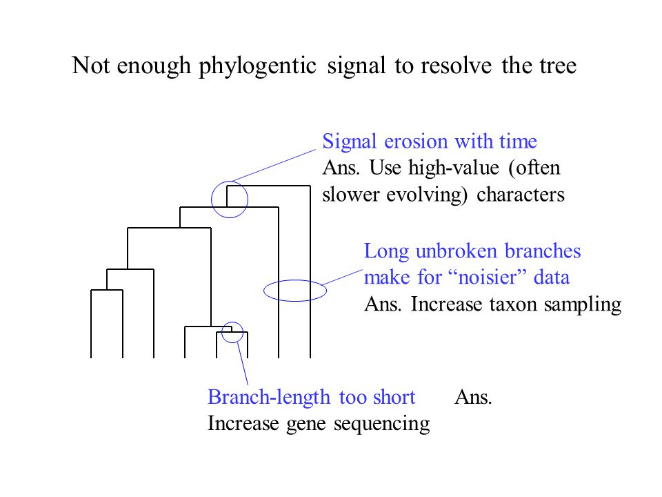 Not enough phylogentic signal to resolve the tree Branch-length too short Ans. Increase gene sequencing Signal erosion with time Ans. Use high-value (