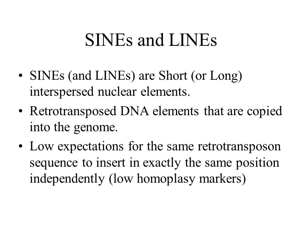 SINEs and LINEs SINEs (and LINEs) are Short (or Long) interspersed nuclear elements. Retrotransposed DNA elements that are copied into the genome. Low