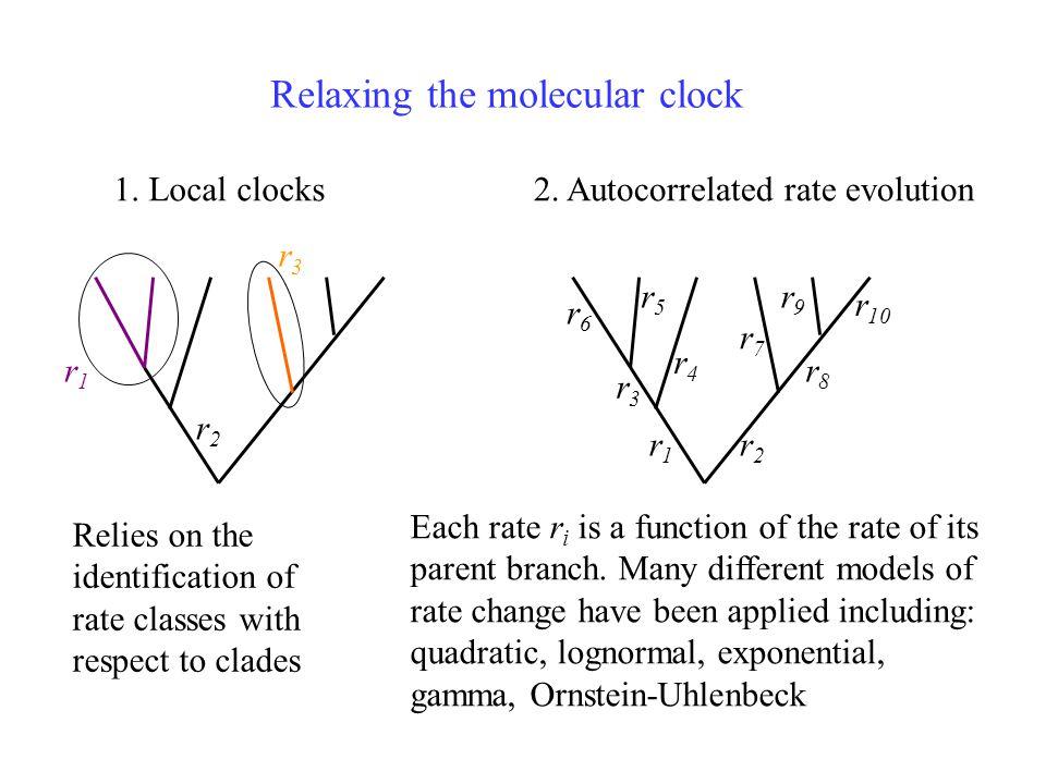 Relaxing the molecular clock 1. Local clocks2.