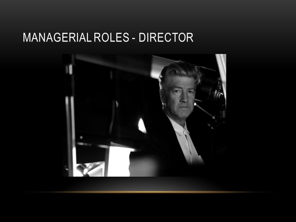 MANAGERIAL ROLES - DIRECTOR