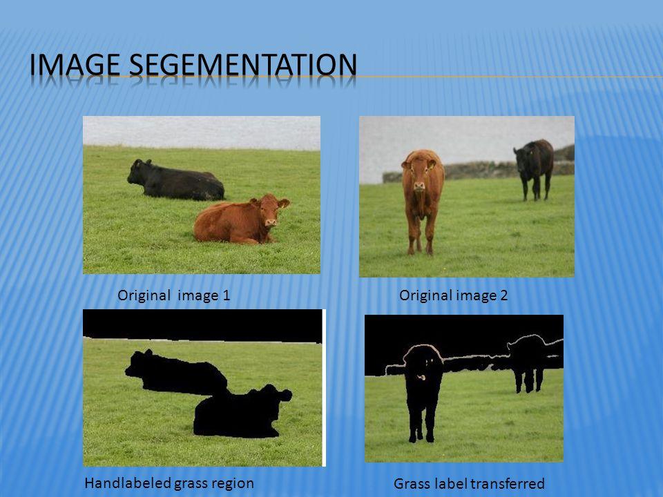 Original image 1Original image 2 Handlabeled grass region Grass label transferred