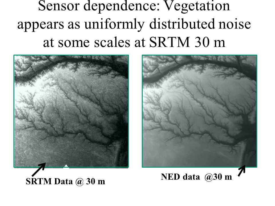 Sensor dependence: Vegetation appears as uniformly distributed noise at some scales at SRTM 30 m SRTM 30 m NED m