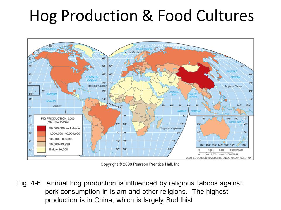 Hog Production & Food Cultures Fig. 4-6: Annual hog production is influenced by religious taboos against pork consumption in Islam and other religions