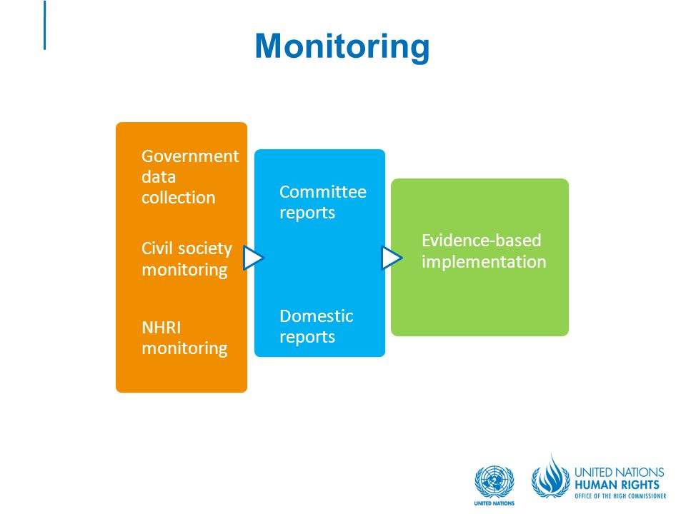 Monitoring Government data collection Civil society monitoring NHRI monitoring Committee reports Domestic reports Evidence-based implementation
