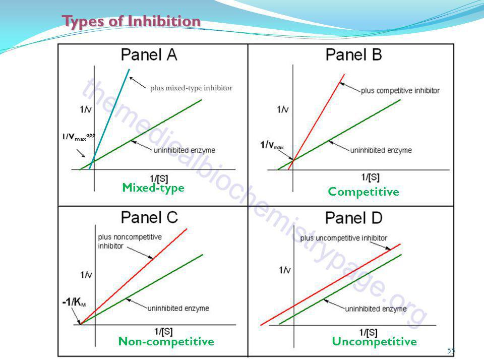 Types of Inhibition 55 plus mixed-type inhibitor 1/V 1/V max app Mixed-type Competitive Non-competitiveUncompetitive