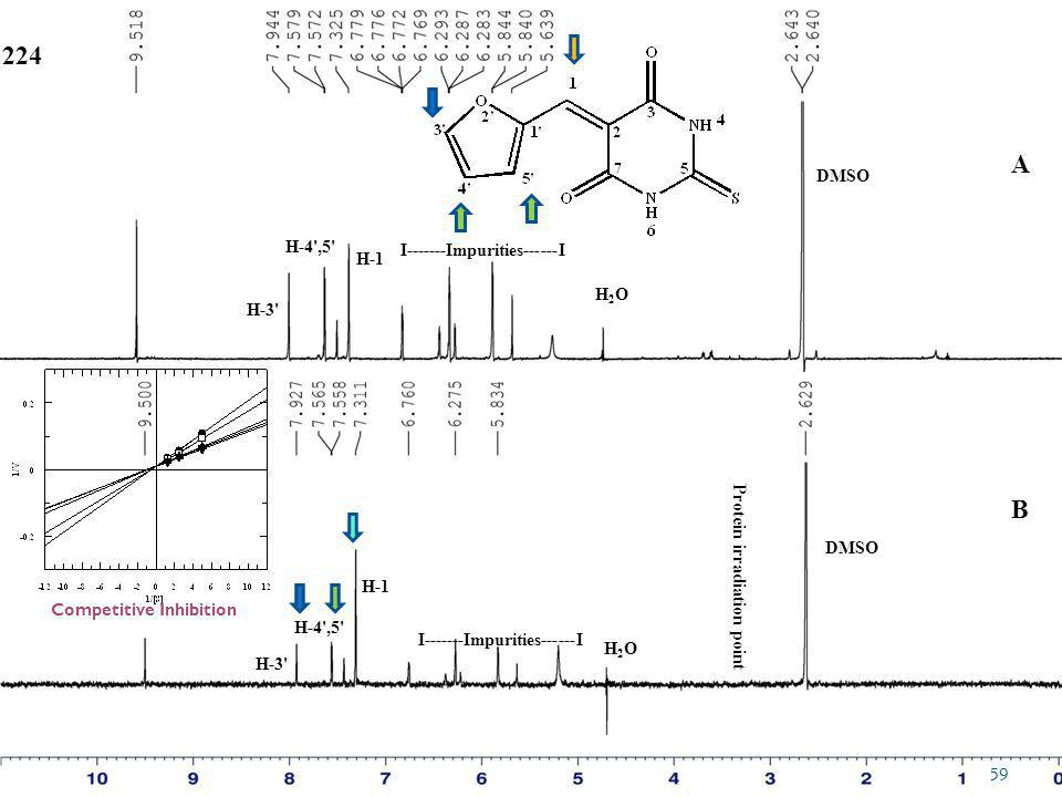 DMSO Protein irradiation point DMSO H2OH2O H2OH2O 224 H-1 H-4',5' I-------Impurities------I A B H-3' 59 Competitive Inhibition