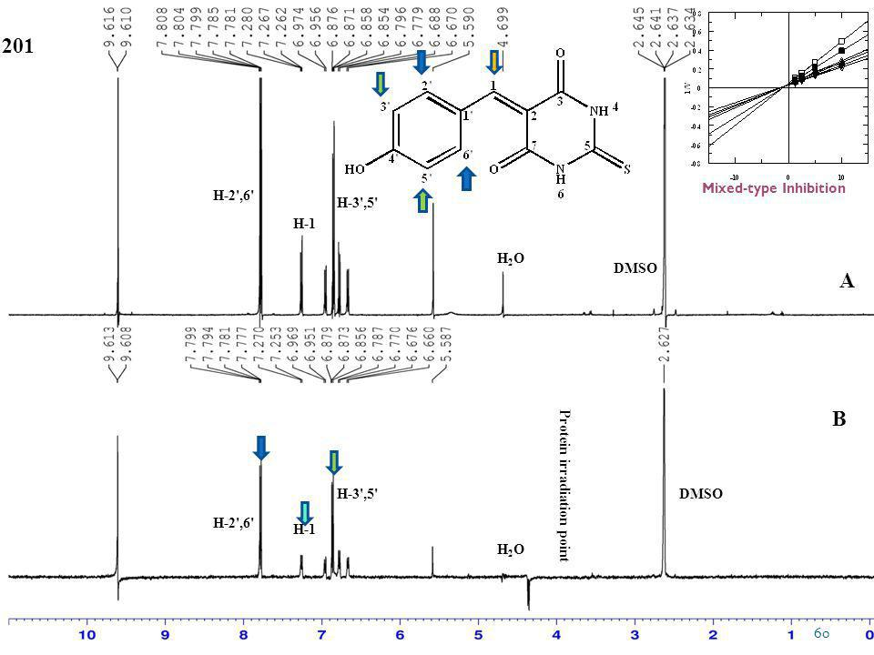 DMSO Protein irradiation point DMSO H2OH2O H2OH2O 201 H-3',5' H-1 H-2',6' H-1 A B 60 Mixed-type Inhibition