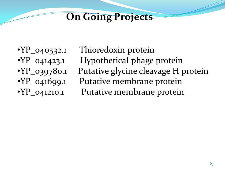 67 On Going Projects YP_040532.1 Thioredoxin protein YP_041423.1 Hypothetical phage protein YP_039780.1 Putative glycine cleavage H protein YP_041699.