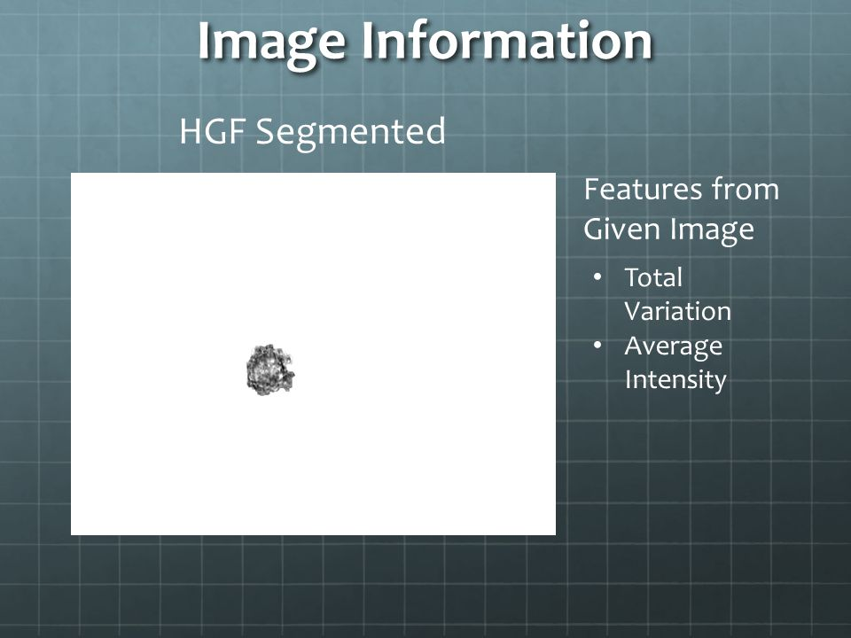Image Information Total Variation Average Intensity Features from Given Image HGF Segmented