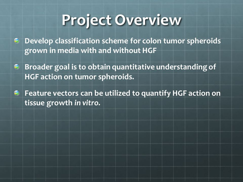Project Overview Develop classification scheme for colon tumor spheroids grown in media with and without HGF Broader goal is to obtain quantitative understanding of HGF action on tumor spheroids.