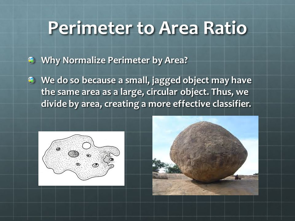 Perimeter to Area Ratio Why Normalize Perimeter by Area.