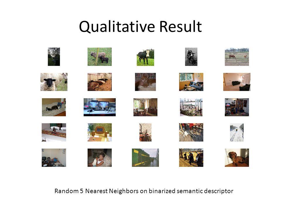 Qualitative Result Random 5 Nearest Neighbors on binarized semantic descriptor