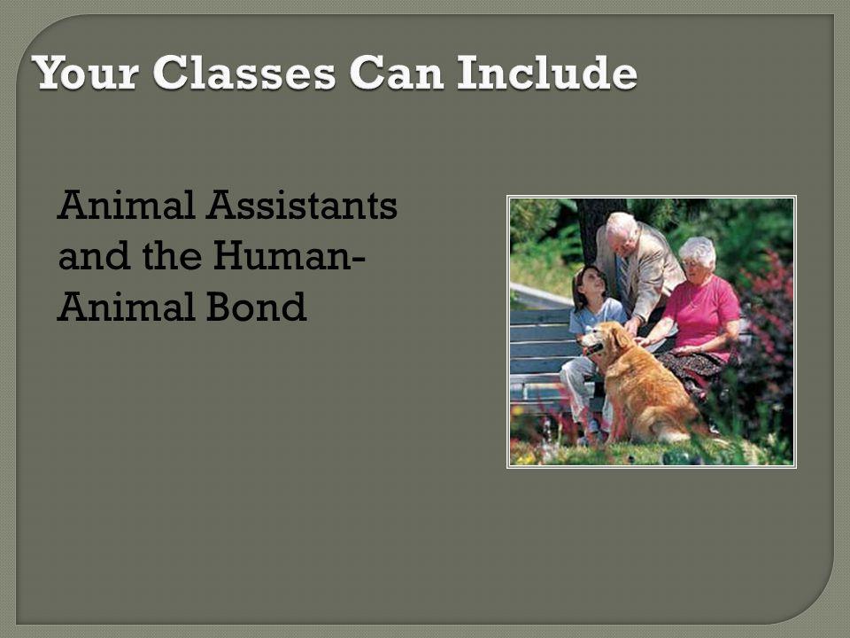 Animal Assistants and the Human- Animal Bond