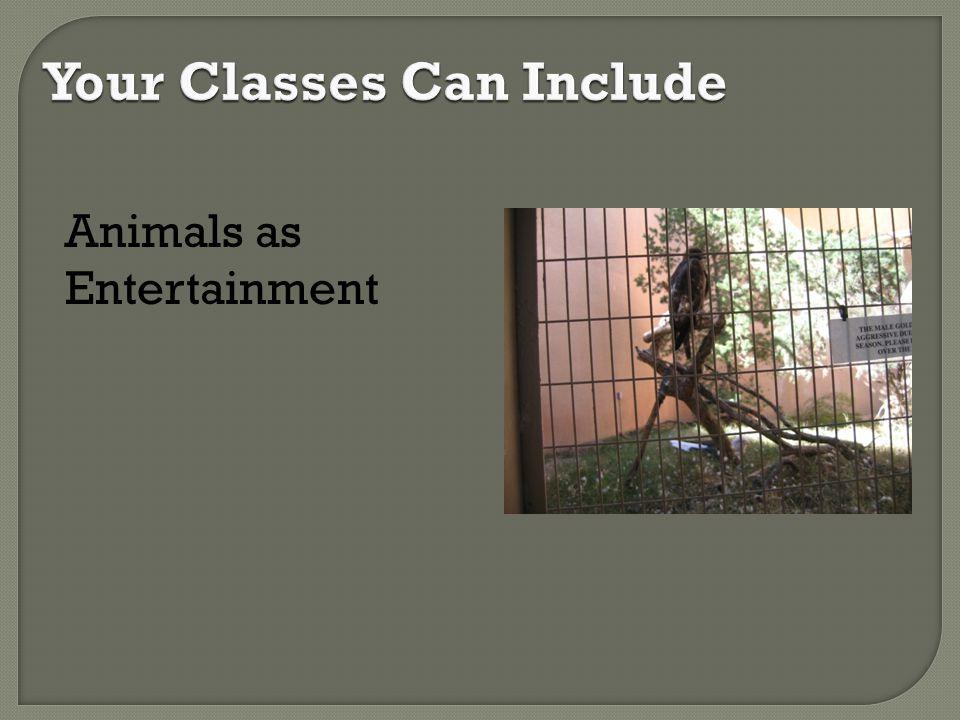 Animals as Entertainment