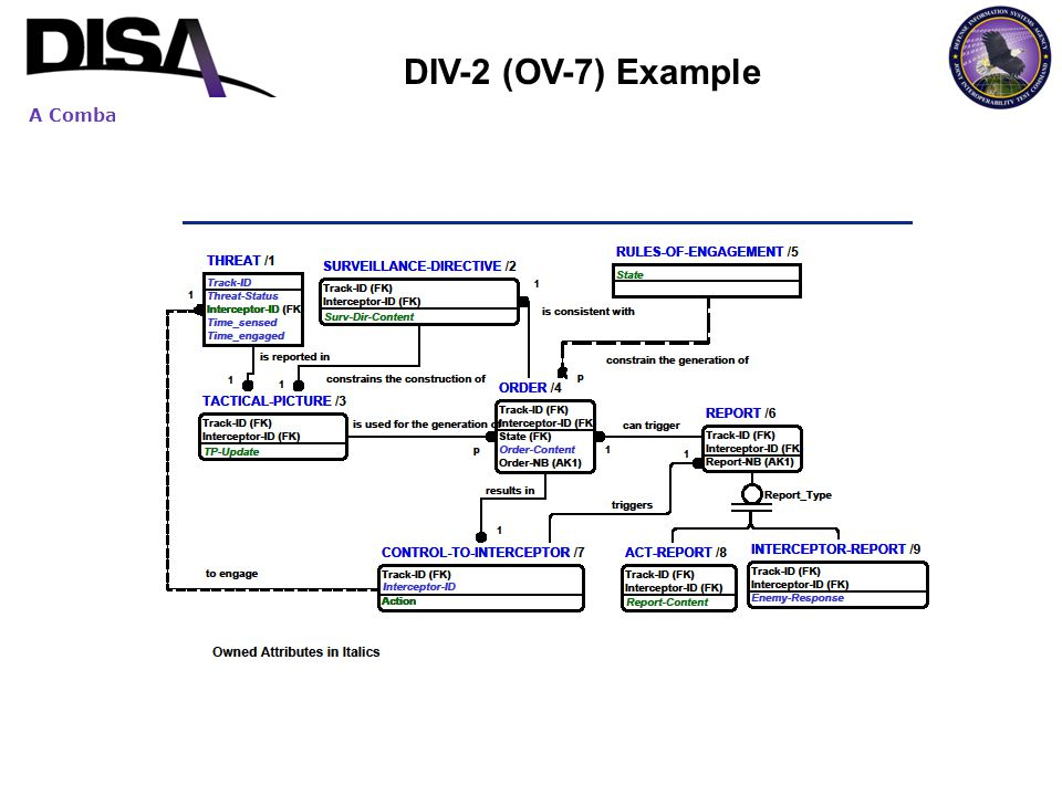A Combat Support Agency DIV-2 (OV-7) Example