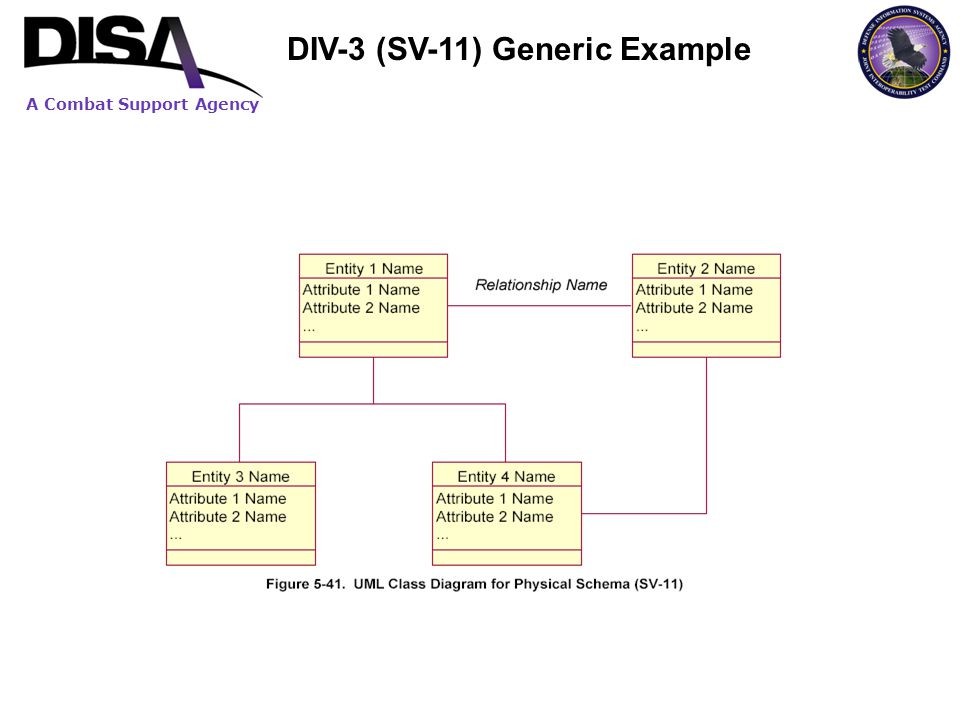 A Combat Support Agency DIV-3 (SV-11) Generic Example