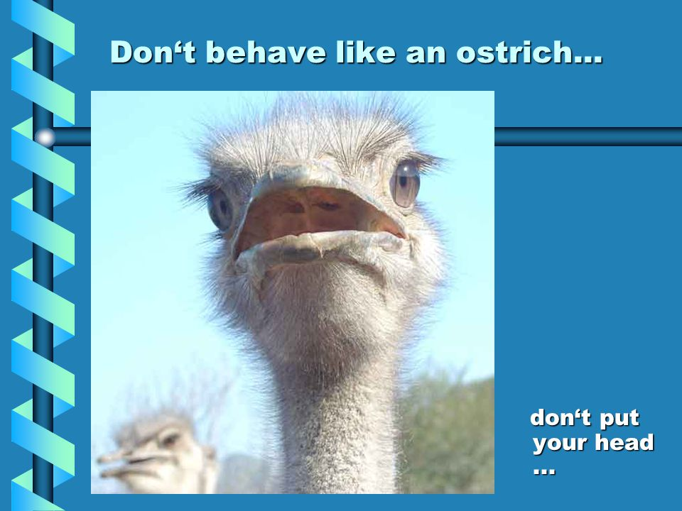 Dont behave like an ostrich... dont put your head...