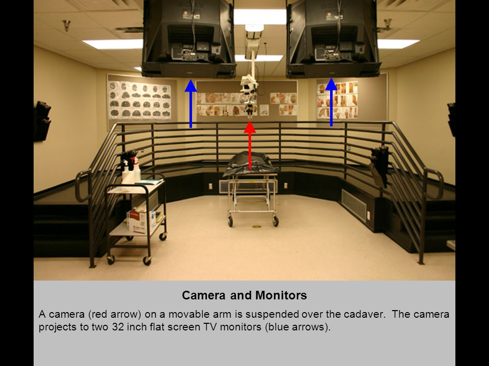 Camera and Monitors A camera (red arrow) on a movable arm is suspended over the cadaver.