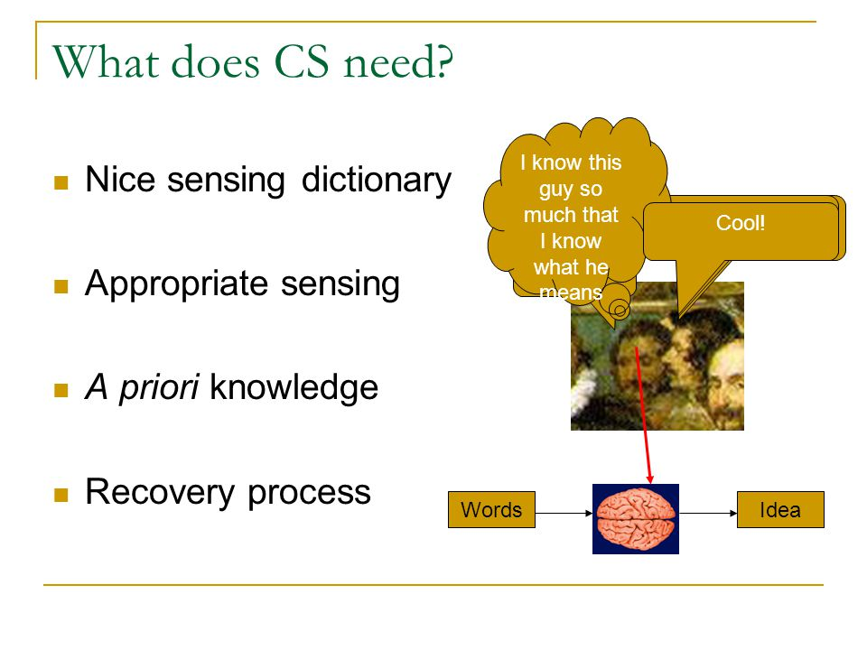 What does CS need? Nice sensing dictionary Appropriate sensing A priori knowledge Recovery process Wie lange wird das nehmen? What? Saint Roques dog h