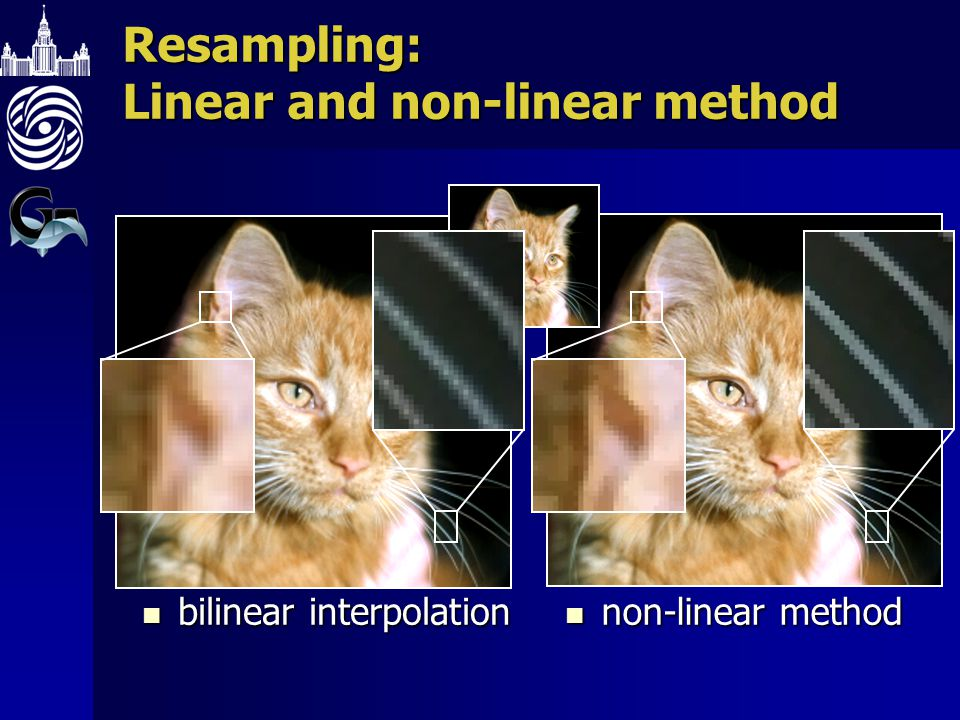 Resampling: Linear and non-linear method bilinear interpolation bilinear interpolation non-linear method non-linear method