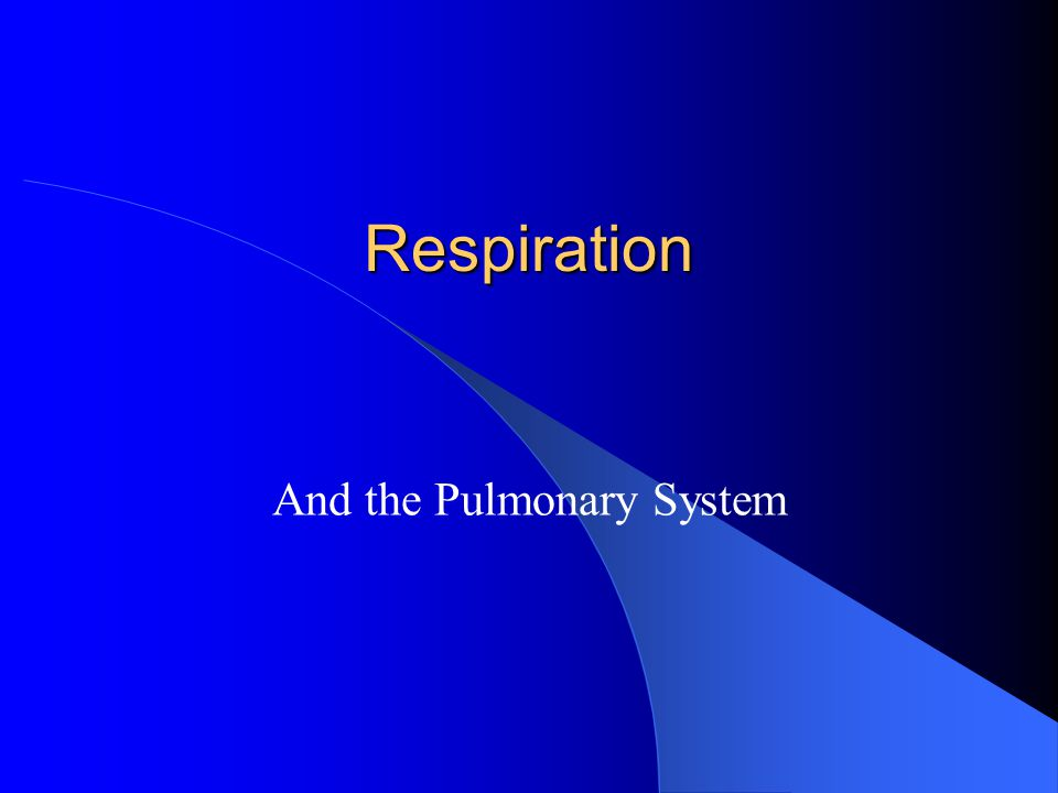 Respiration And the Pulmonary System