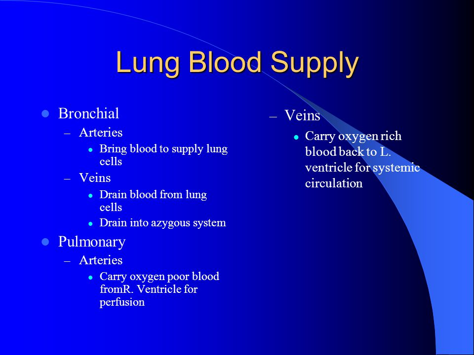 Lung Blood Supply Bronchial – Arteries Bring blood to supply lung cells – Veins Drain blood from lung cells Drain into azygous system Pulmonary – Arteries Carry oxygen poor blood fromR.