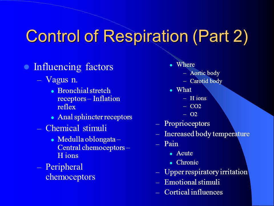 Control of Respiration (Part 2) Influencing factors – Vagus n.