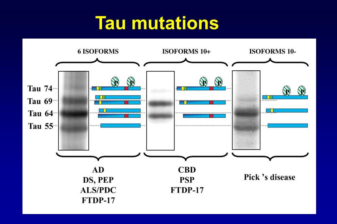 Tau mutations