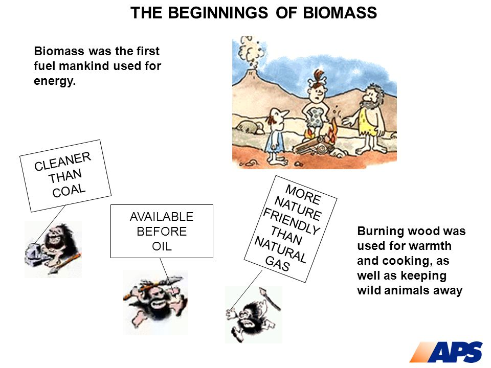 THE BEGINNINGS OF BIOMASS Biomass was the first fuel mankind used for energy. CLEANER THAN COAL AVAILABLE BEFORE OIL MORE NATURE FRIENDLY THAN NATURAL