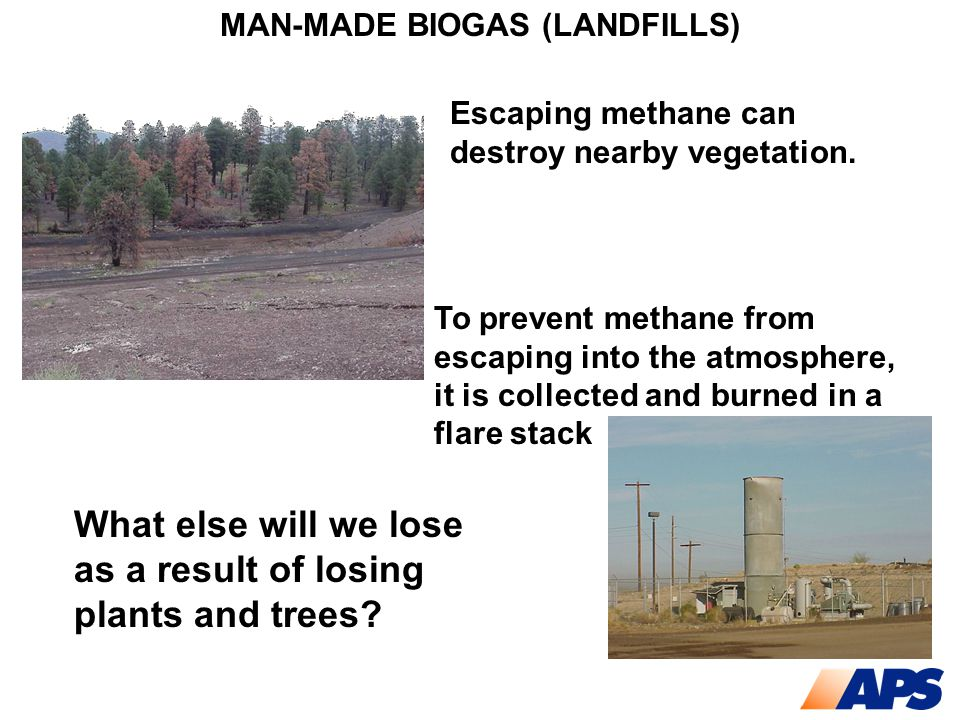 MAN-MADE BIOGAS (LANDFILLS) To prevent methane from escaping into the atmosphere, it is collected and burned in a flare stack Escaping methane can des