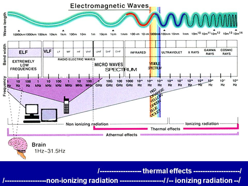 EMF Safety Assumes only ionizing radiation causes chemical change EMF cell damage is only caused by heating safe EMF limits can be set in terms of heating rate (SAR) EMF exposure limits can be set separately for each EM spectrum subdivision EMF Research Shows non-ionizing EMF also causes chemical change EMF cell damage occurs without heating non-thermal EMF effects occur below the safety limits biological reactions are stimulated across spectrum and effects may be additive