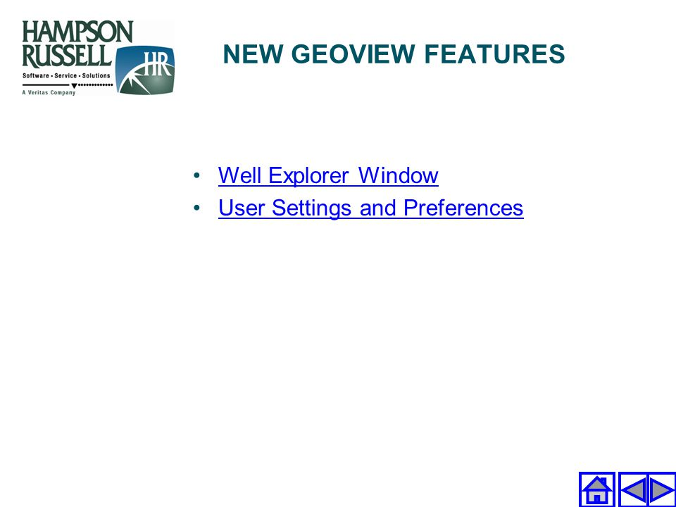 Well Explorer Window User Settings and Preferences NEW GEOVIEW FEATURES
