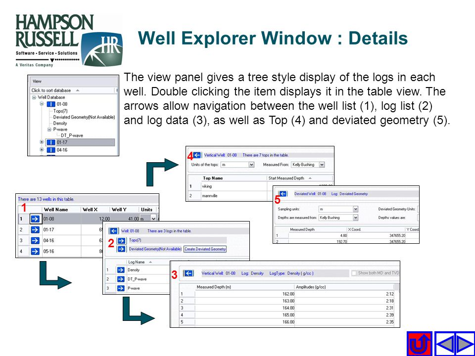 Well Explorer Window : Details The view panel gives a tree style display of the logs in each well. Double clicking the item displays it in the table v