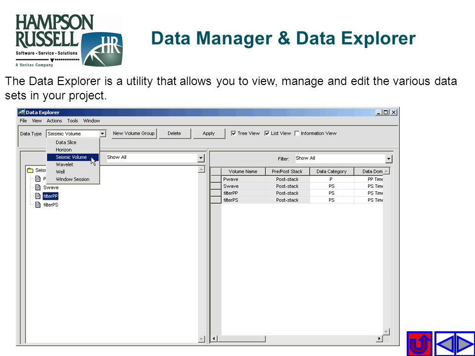 The Data Explorer is a utility that allows you to view, manage and edit the various data sets in your project. Data Manager & Data Explorer