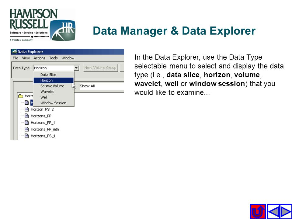 In the Data Explorer, use the Data Type selectable menu to select and display the data type (i.e., data slice, horizon, volume, wavelet, well or windo
