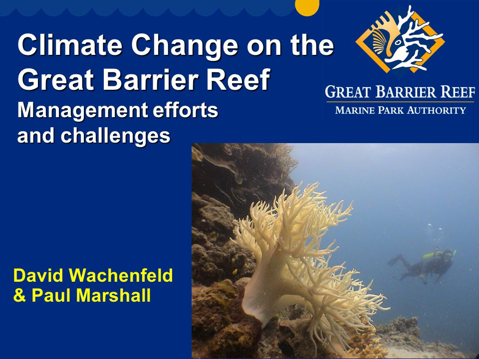 Climate Change on the Great Barrier Reef Management efforts and challenges David Wachenfeld & Paul Marshall