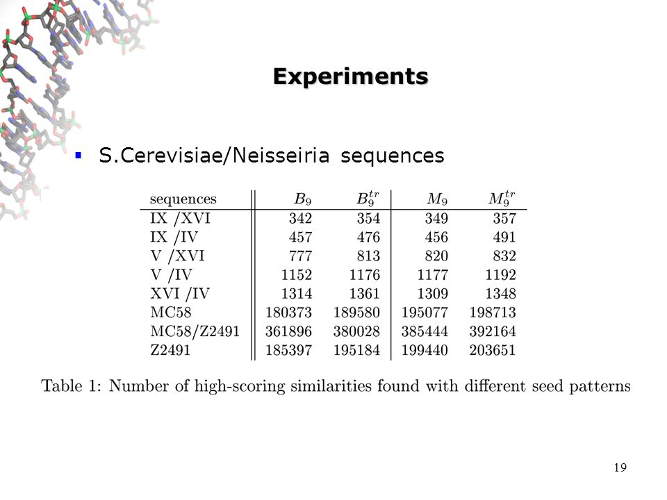 19 Experiments S.Cerevisiae/Neisseiria sequences