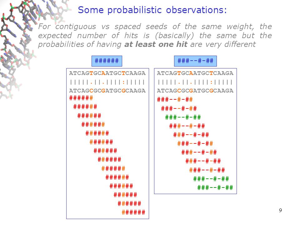9 Some probabilistic observations: ATCAGTGCAATGCTCAAGA ||||||||||||||||||| ATCAGTGCAATGCTCAAGA ###--#-## ATCAGTGCAATGCTCAAGA ||||||||||||||||||| ATCAGTGCAATGCTCAAGA ###### ATCAGTGCAATGCTCAAGA ||||||||||||||||||| ATCAGTGCAATGCTCAAGA ###--#-## ATCAGTGCAATGCTCAAGA ||||||||||||||||||| ATCAGTGCAATGCTCAAGA ###### ATCAGTGCAATGCTCAAGA ||||||||||||||||||| ATCAGTGCAATGCTCAAGA ###--#-## ATCAGTGCAATGCTCAAGA ||||||||||||||||||| ATCAGTGCAATGCTCAAGA ###### ATCAGTGCAATGCTCAAGA |||||.||||||||||||| ATCAGCGCAATGCTCAAGA ###--#-## ATCAGTGCAATGCTCAAGA |||||.||||||||||||| ATCAGCGCAATGCTCAAGA ###### ATCAGTGCAATGCTCAAGA |||||.||||||||||||| ATCAGCGCAATGCTCAAGA ###--#-## ATCAGTGCAATGCTCAAGA |||||.||||||||||||| ATCAGCGCAATGCTCAAGA ###### ATCAGTGCAATGCTCAAGA |||||.||||||||||||| ATCAGCGCAATGCTCAAGA ###--#-## ATCAGTGCAATGCTCAAGA |||||.||||||||||||| ATCAGCGCAATGCTCAAGA ###### ATCAGTGCAATGCTCAAGA |||||.||||||||||||| ATCAGCGCAATGCTCAAGA ###--#-## ATCAGTGCAATGCTCAAGA |||||.||||||||||||| ATCAGCGCAATGCTCAAGA ###### ATCAGTGCAATGCTCAAGA |||||.|||||||:||||| ATCAGCGCAATGCGCAAGA ###--#-## ATCAGTGCAATGCTCAAGA |||||.|||||||:||||| ATCAGCGCAATGCGCAAGA ###### ATCAGTGCAATGCTCAAGA |||||.|||||||:||||| ATCAGCGCAATGCGCAAGA ###--#-## ATCAGTGCAATGCTCAAGA |||||.|||||||:||||| ATCAGCGCAATGCGCAAGA ###### ATCAGTGCAATGCTCAAGA |||||.|||||||:||||| ATCAGCGCAATGCGCAAGA ###--#-## ATCAGTGCAATGCTCAAGA |||||.|||||||:||||| ATCAGCGCAATGCGCAAGA ###### ATCAGTGCAATGCTCAAGA |||||.|||||||:||||| ATCAGCGCAATGCGCAAGA ###--#-## ATCAGTGCAATGCTCAAGA |||||.|||||||:||||| ATCAGCGCAATGCGCAAGA ###### ATCAGTGCAATGCTCAAGA |||||.||.||||:||||| ATCAGCGCGATGCGCAAGA ###--#-## ATCAGTGCAATGCTCAAGA |||||.||.||||:||||| ATCAGCGCGATGCGCAAGA ###### ATCAGTGCAATGCTCAAGA |||||.||.||||:||||| ATCAGCGCGATGCGCAAGA ###--#-## ATCAGTGCAATGCTCAAGA |||||.||.||||:||||| ATCAGCGCGATGCGCAAGA ###### ###### ATCAGTGCAATGCTCAAGA |||||.||.||||:||||| ATCAGCGCGATGCGCAAGA ###--#-## ATCAGTGCAATGCTCAAGA |||||.||.||||:||||| ATCAGCGCGATGCGCAAGA ###### ###### ATCAGTGCAATGCTCAAGA |||||.||.||||:||||| ATCAGCGCGATGCGCAAGA ###--#-## ATCAGTGCAATGCTCAAGA |||||.||.||||:||||| ATCAGCGCGATGCGCAAGA ###### ###### For contiguous vs spaced seeds of the same weight, the expected number of hits is (basically) the same but the probabilities of having at least one hit are very different