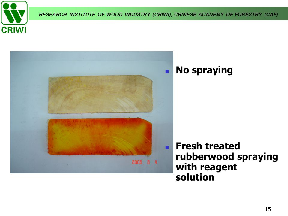 RESEARCH INSTITUTE OF WOOD INDUSTRY (CRIWI), CHINESE ACADEMY OF FORESTRY (CAF) 15 No spraying Fresh treated rubberwood spraying with reagent solution