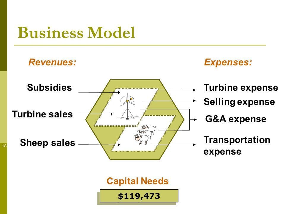 18 Sheep sales G&A expense Transportation expense SubsidiesTurbine expense Selling expense Business Model Turbine sales Capital Needs $119,473 Revenues:Expenses: