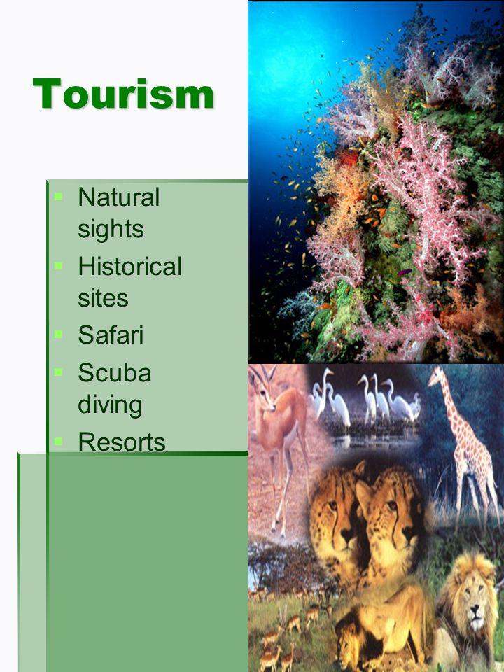 Tourism Natural sights Natural sights Historical sites Historical sites Safari Safari Scuba diving Scuba diving Resorts Resorts
