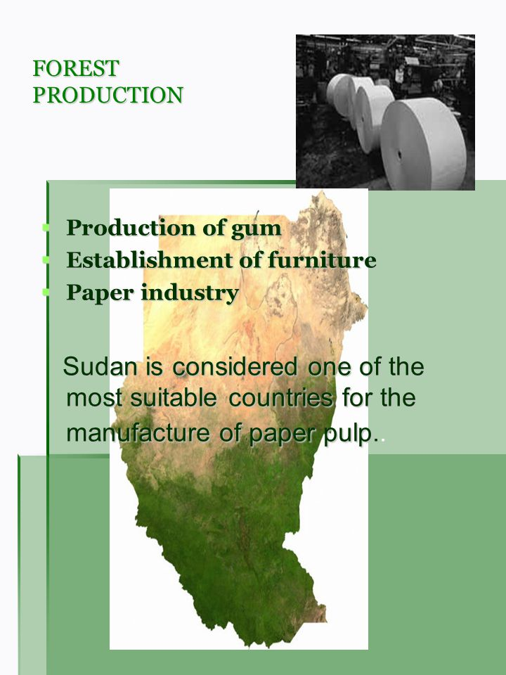 FOREST PRODUCTION Production of gum Production of gum Establishment of furniture Establishment of furniture Paper industry Paper industry Sudan is con