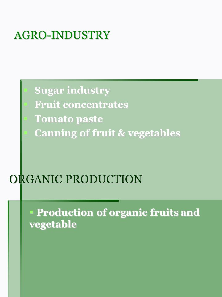 AGRO-INDUSTRY Sugar industry Sugar industry Fruit concentrates Fruit concentrates Tomato paste Tomato paste Canning of fruit & vegetables Canning of fruit & vegetables ORGANIC PRODUCTION Production of organic fruits and vegetable Production of organic fruits and vegetable